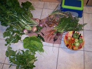 garden-goods6